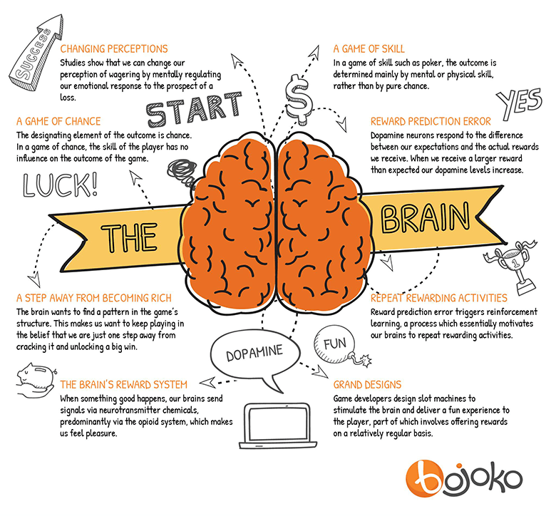 brain-infographic-1.png